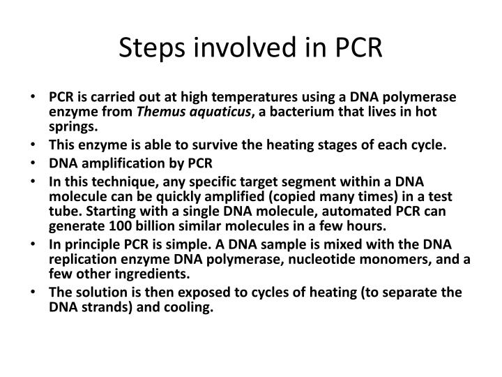 Steps involved in PCR