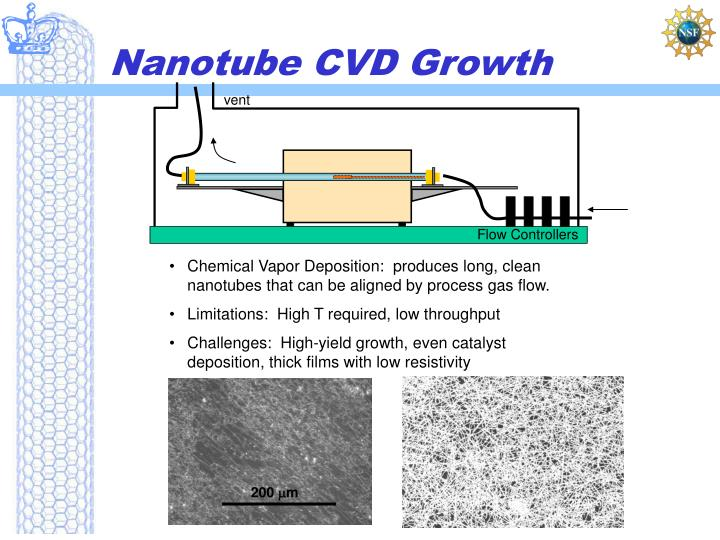 Nanotube cvd growth