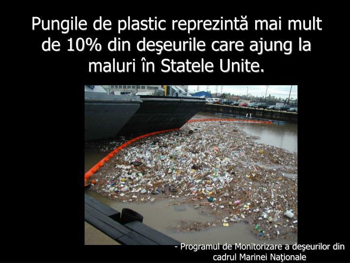 Pungile de plastic reprezintă mai mult de 10% din deşeurile care ajung la maluri în Statele Unite.