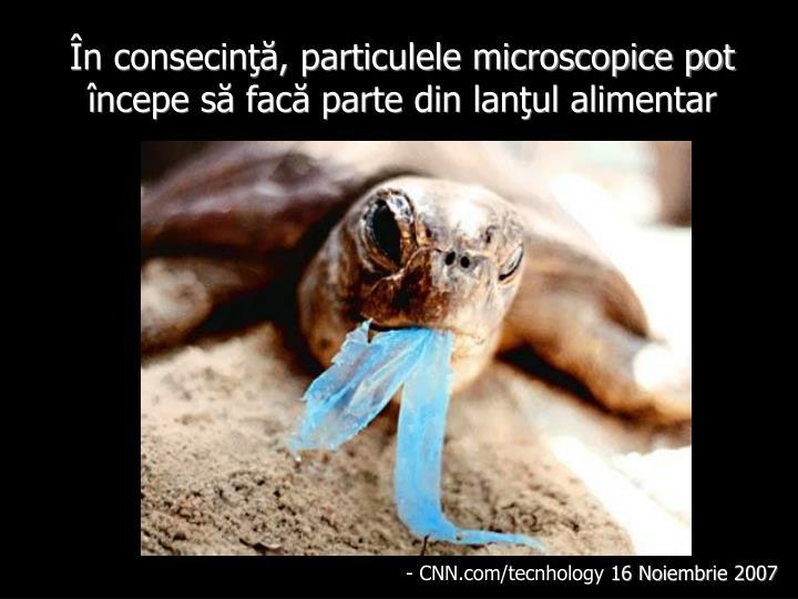 În consecinţă, particulele microscopice pot începe să facă parte din lanţul alimentar