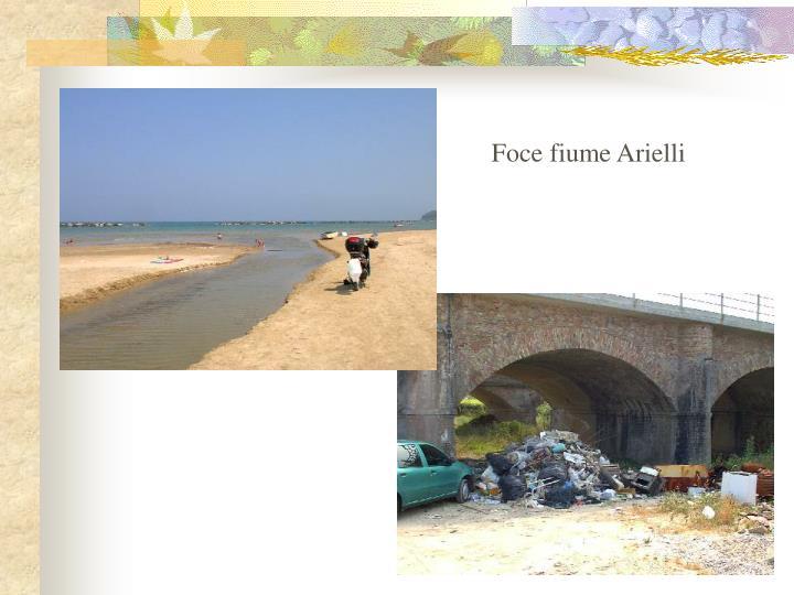 Foce fiume Arielli