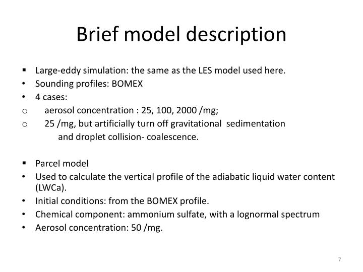 Brief model description