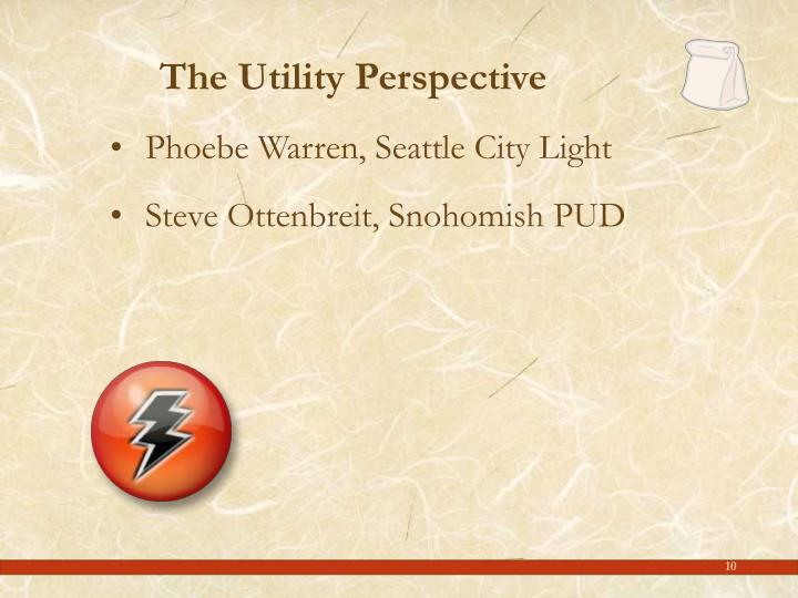 The Utility Perspective