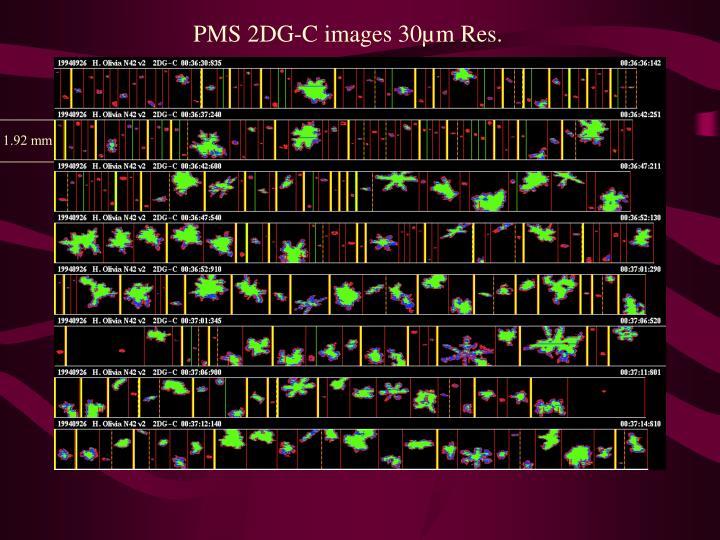 PMS 2DG-C images 30µm Res.