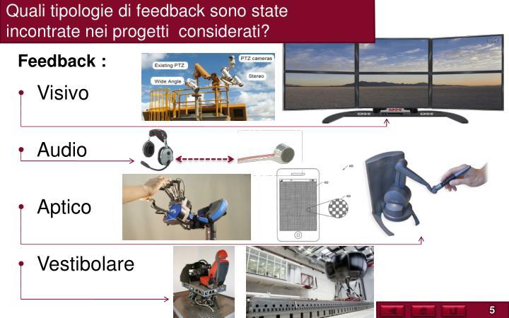 Quali tipologie di feedback sono state incontrate nei progetti  considerati?