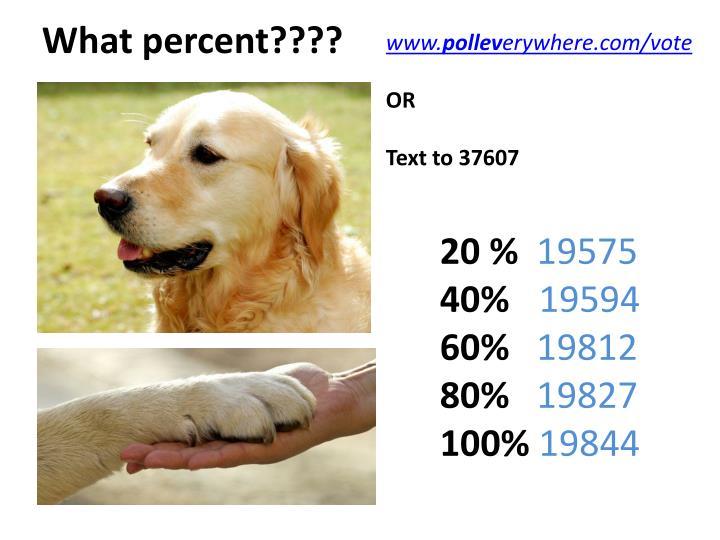 What percent????