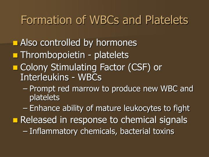 Formation of WBCs and Platelets