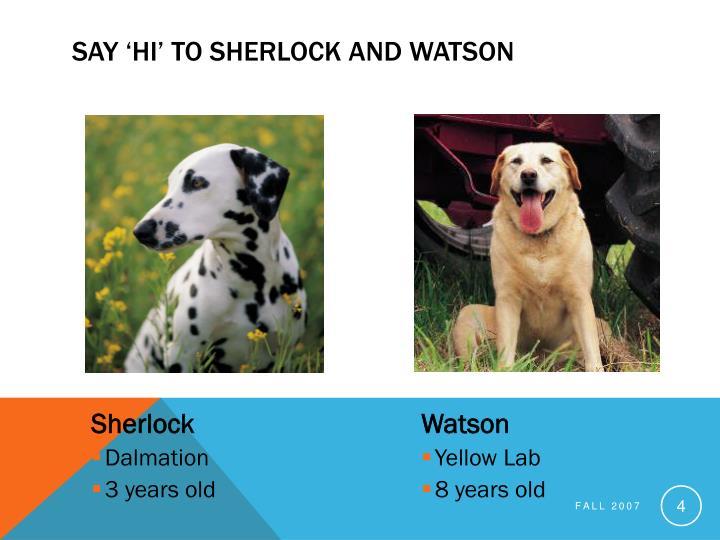 Say 'Hi' to Sherlock and Watson