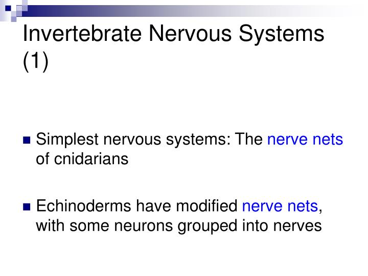 Invertebrate Nervous Systems (1)