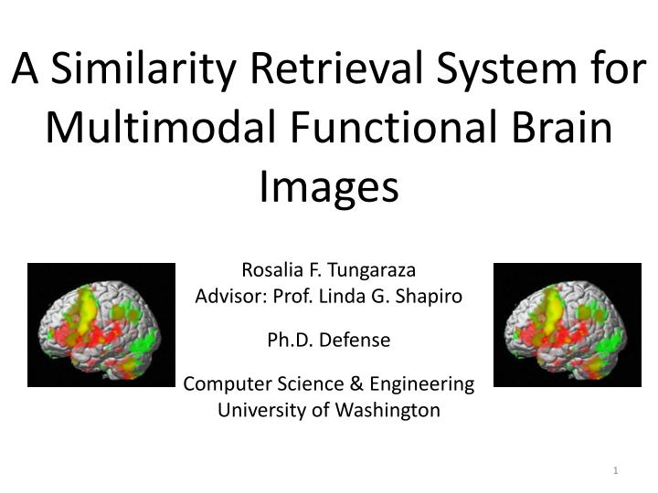 A similarity retrieval system for multimodal functional brain images