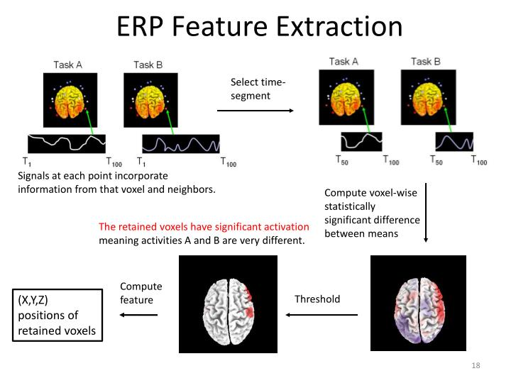 ERP Feature Extraction