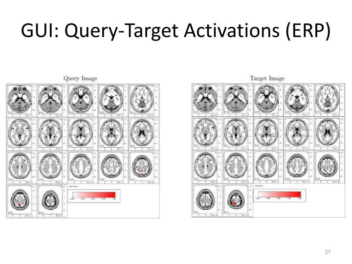 GUI: Query-Target Activations (ERP)
