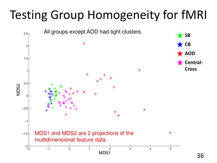 Testing Group Homogeneity for fMRI