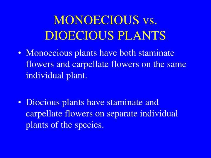 MONOECIOUS vs. DIOECIOUS PLANTS