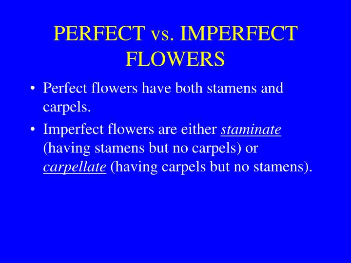 PERFECT vs. IMPERFECT FLOWERS