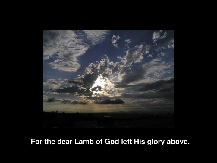For the dear Lamb of God left His glory above