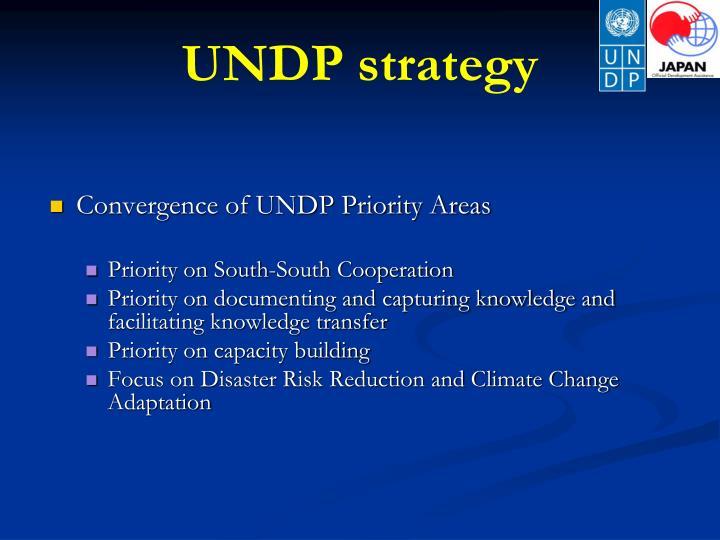 UNDP strategy