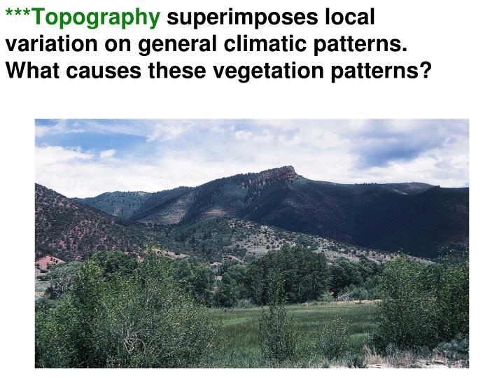 ***Topography