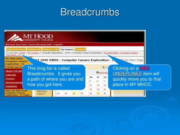 This long list is called Breadcrumbs.  It gives you a path of where you are and how you got here.
