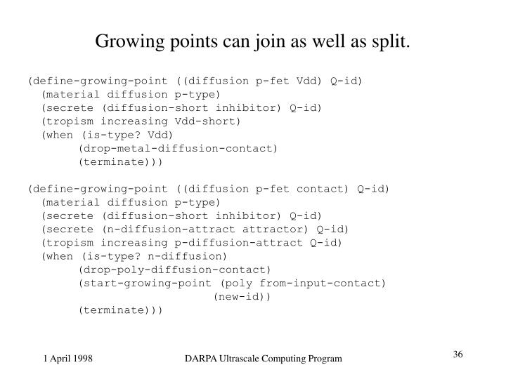 Growing points can join as well as split.