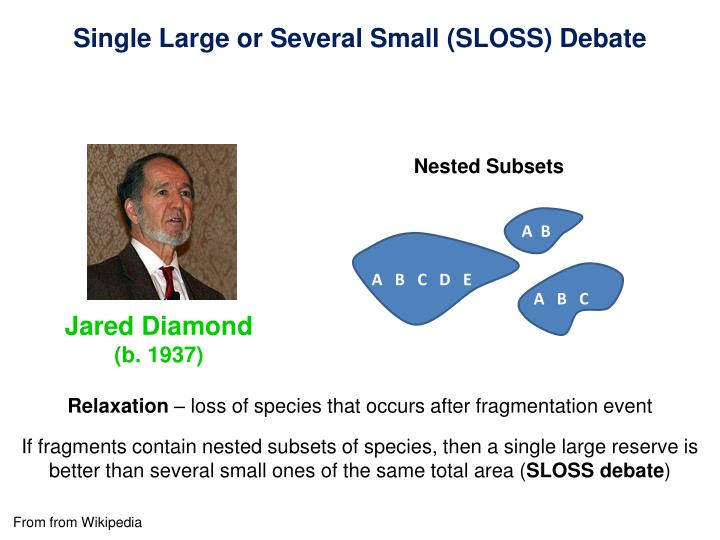 Single Large or Several Small (SLOSS) Debate