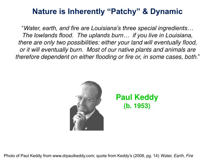 "Nature is Inherently ""Patchy"" & Dynamic"