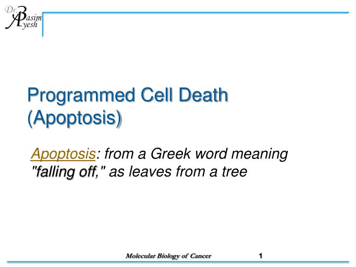Programmed cell death apoptosis