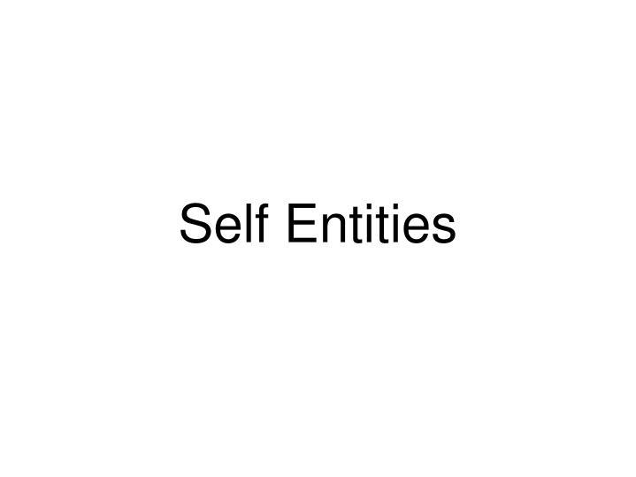 Self Entities
