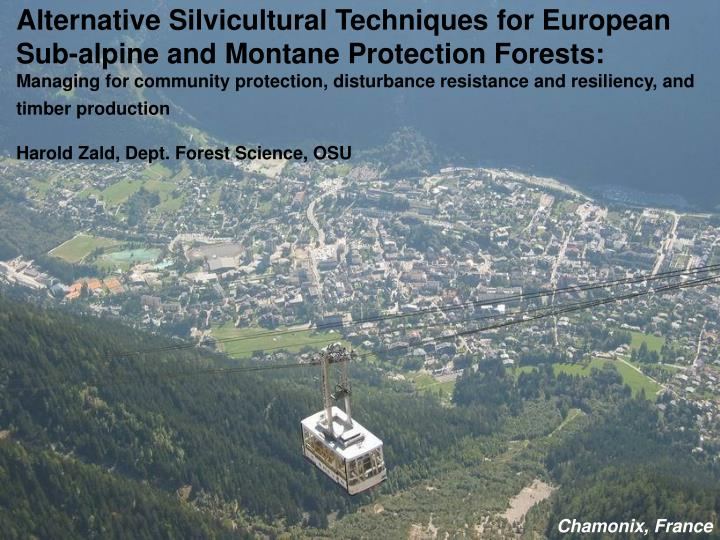 Alternative Silvicultural Techniques for European Sub-alpine and Montane Protection Forests: