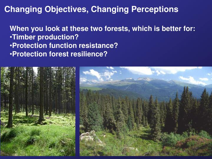 Changing Objectives, Changing Perceptions