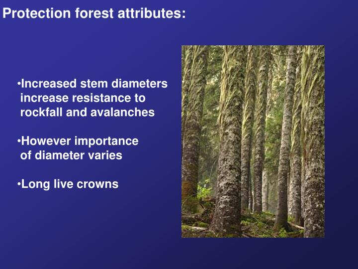 Protection forest attributes: