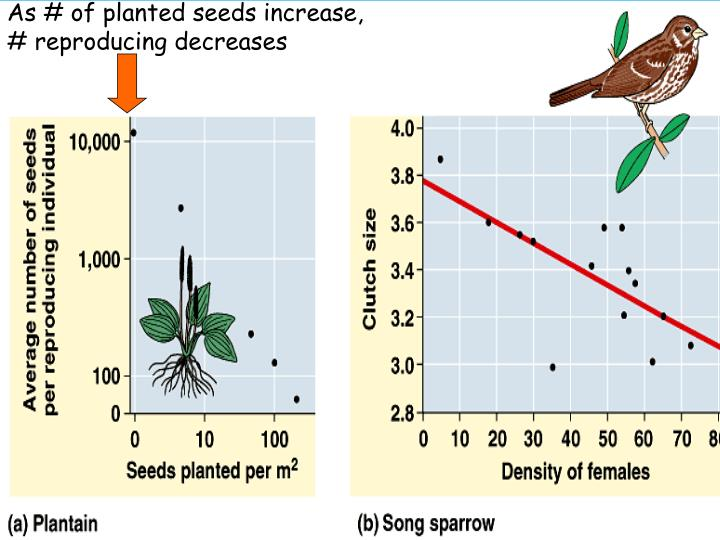 As # of planted seeds increase,
