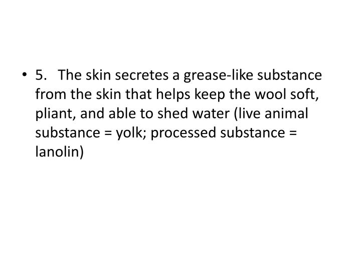 5.The skin secretes a grease-like substance from the skin that helps keep the wool soft, pliant, and able to shed water (live animal substance = yolk; processed substance = lanolin)