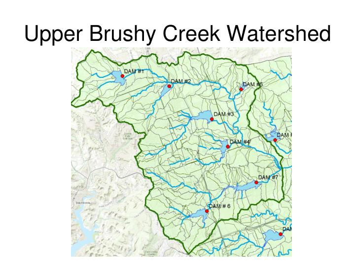 Upper Brushy Creek Watershed