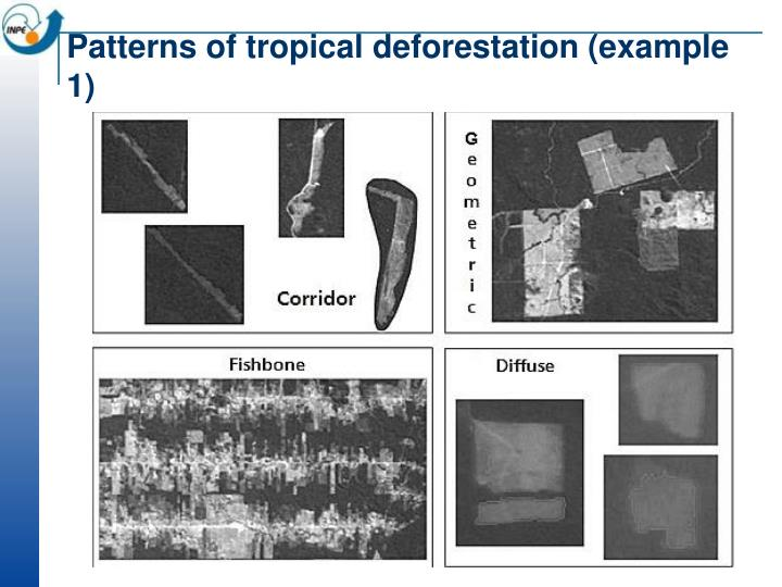 Patterns of tropical deforestation