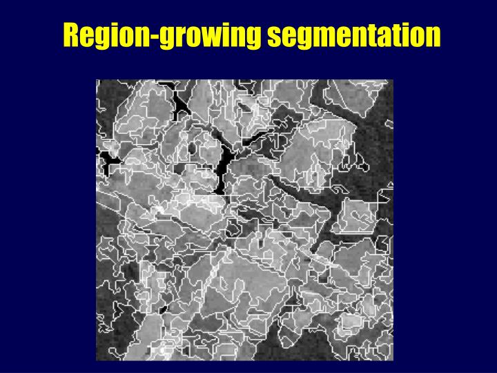 Region-growing segmentation