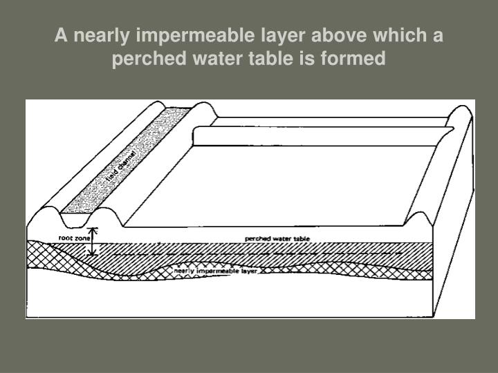 A nearly impermeable layer above which a perched water table is formed