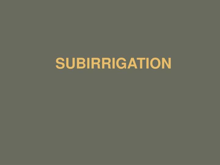 SUBIRRIGATION