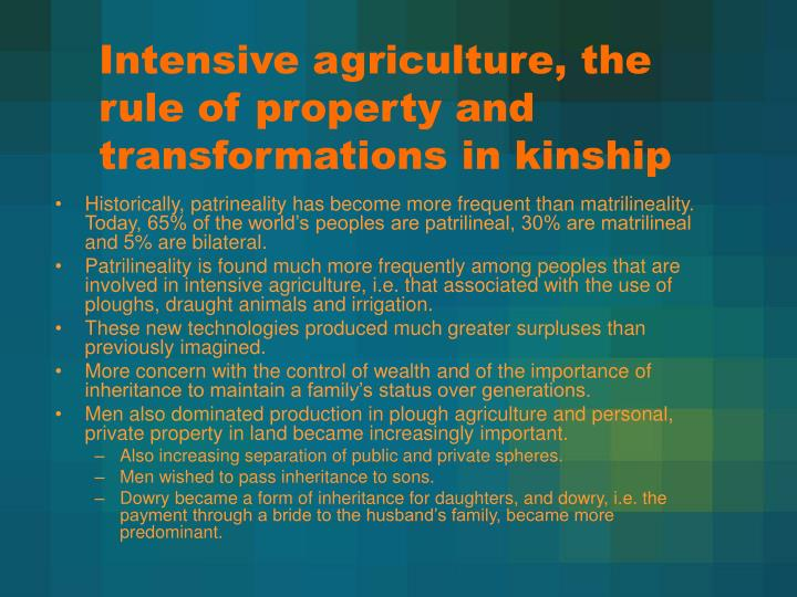 Intensive agriculture, the rule of property and transformations in kinship