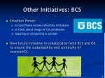 other initiatives bcs