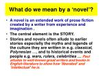 what do we mean by a novel