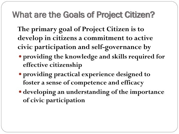 What are the Goals of Project Citizen?