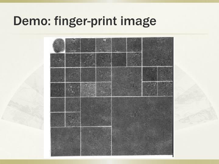 Demo: finger-print image