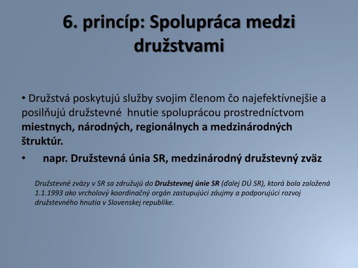 6. princíp: Spolupráca medzi družstvami