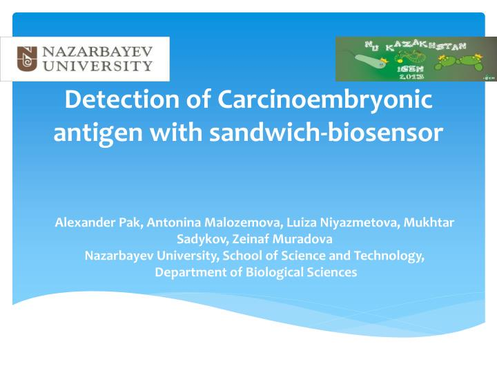 Detection of carcinoembryonic antigen with sandwich biosensor
