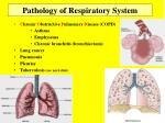 pathology of respiratory system