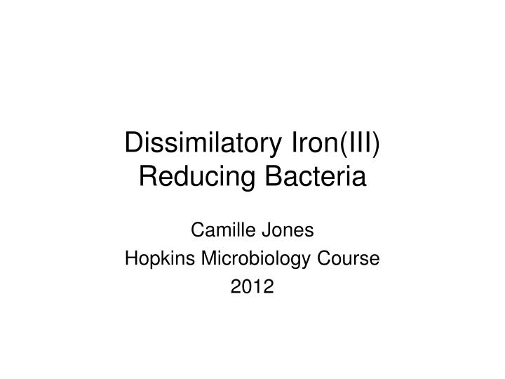 dissimilatory iron iii reducing bacteria