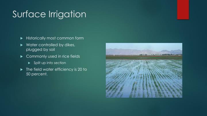 Surface Irrigation