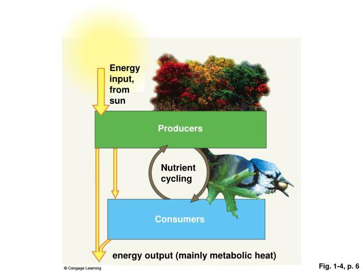 Energy input, from sun