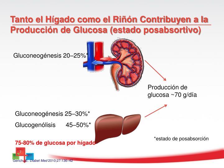 PPT - Diabetes Mellitus Tipo 2 Tratamiento después de la
